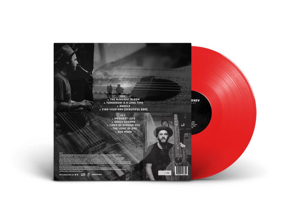 PAT Vinyl_Mock_B.jpg