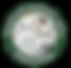 amaa_logo-300x288.png