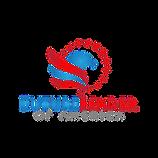 Future Leader of America Logo