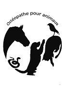 Ostéopathe.jpg