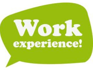 Applicant Advice - Work Experience