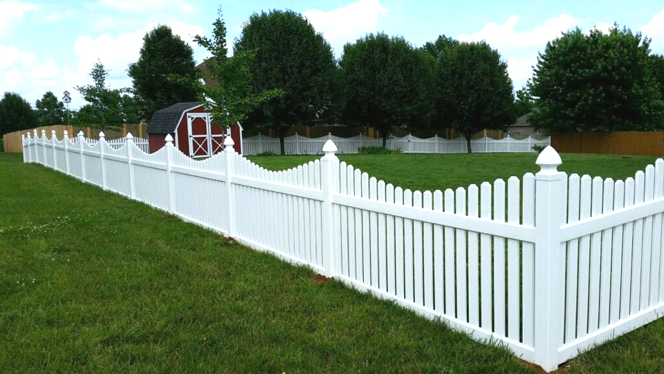 Open Scalloped White Picket Vinyl