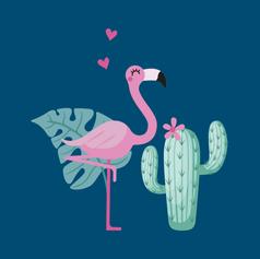 Flamingos - Sabra Sul