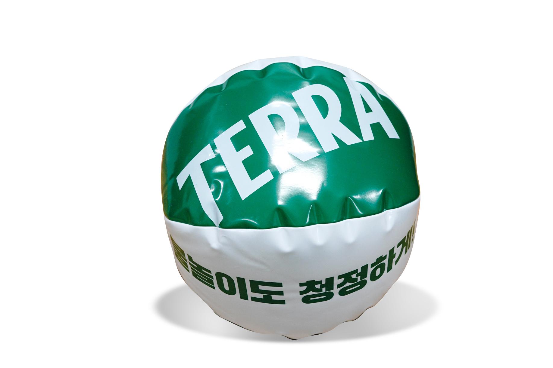 테라 비치볼