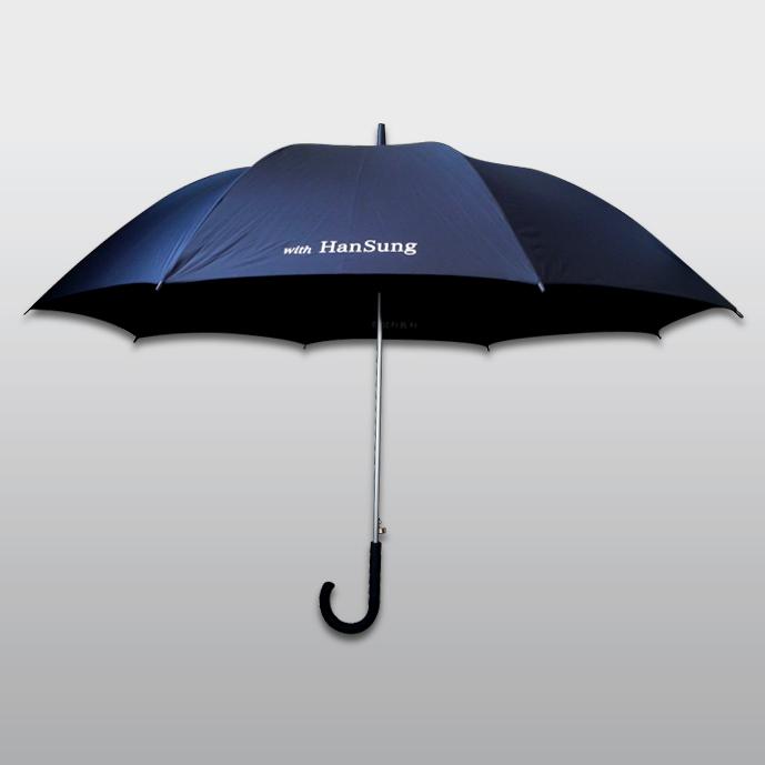 한성자동차 장우산
