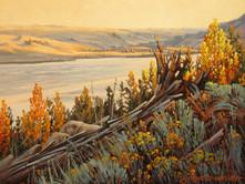 """'Monk Park - Nicola Lake' - 8""""x 10"""" - Oil. (#0736) $700.00 unframed."""