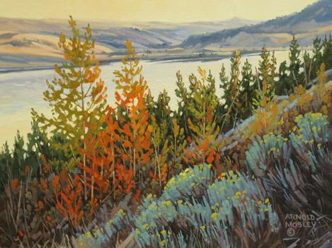 """'Autumn - Nicola Lake' (#2) -  8""""x 10"""" - Oil. SOLD."""