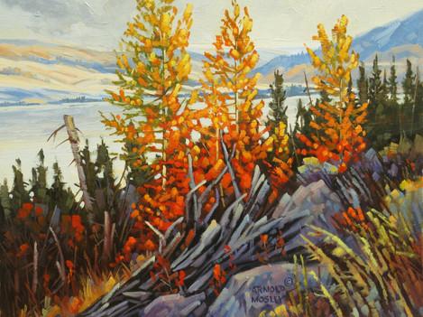 """'Autumn - Nicola Lake' (#1) - 8""""x 10"""" - Oil. SOLD."""