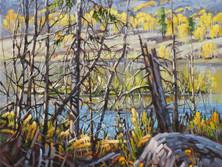 """'English Lake - Kane Valley' - 8""""x 10"""" - Oil. SOLD."""