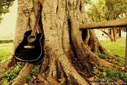 Musical Nature