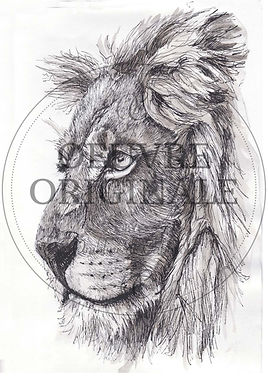 Poil de carotte-Profil de lion-filigrane