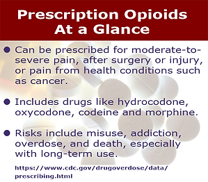 Prescription Opiods at a Glance list text - more details at https://www.cdc.gov/drugoverdose/data/prescribing.html
