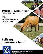 Elite Catalogue Cover.JPG
