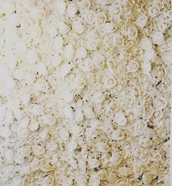 Hydrangea Rose Wall