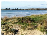 The Port Fairy headland from East Beach