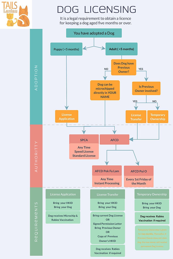 Dog Licensing Overview.jpg