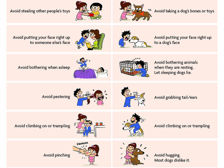 Dog Bite Prevention (Kids)