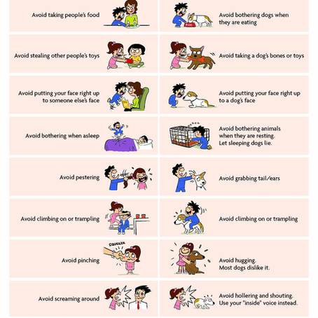 Dog Bite Prevention (Kids)