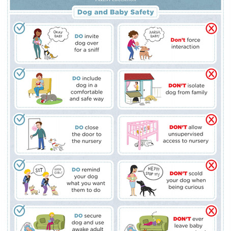 Baby & Toddler Safety Sheet