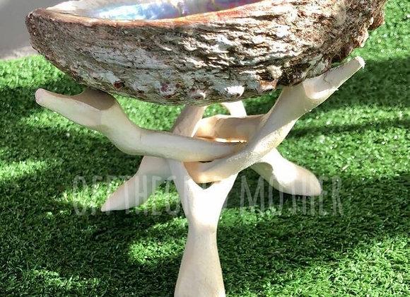 Wooden Abalone Tripod