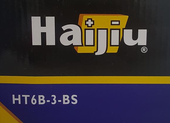 Μπαταρία HT6B-3-BS με υγρά HAIJIU