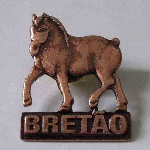 PIN (BROCHE) - bronze