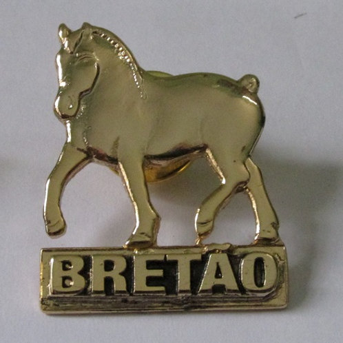 PIN (BROCHE) - dourado