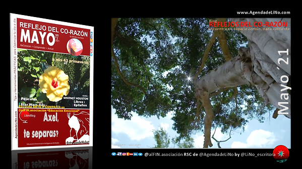 PORTADA_MAYO21_RCR_RedesSociales.png