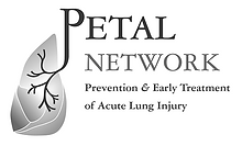 petal logo.png