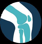Genou prothétique et traumatologie sportive