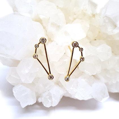 Capricorn Zodiac Earrings