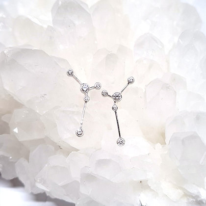 Cancer Zodiac Earrings