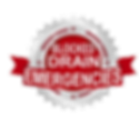 Blocked Drain Logo.png