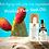 naturkosmetik-kaktusfeige-samen-serum-bio-aging-gesichtsöl-kaktusfeigenkernöl-kaufen-wirkung-kaktusfeigenkernöl-anwendung