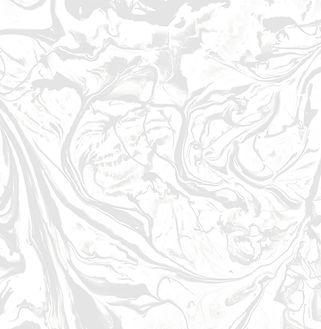 galleriacanalli_texture_01 (2).jpg