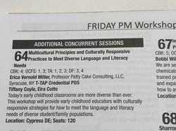 NYSAEYC Workshop Program