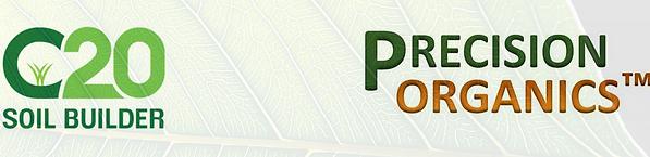 C-20 logo.png