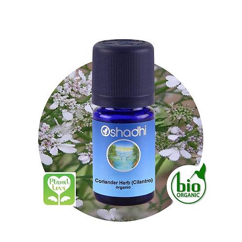 Coriander Herb (Cilantro) organic 有機芫荽葉 5ml