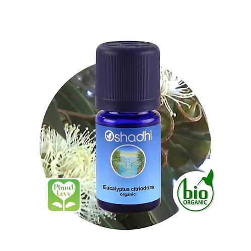 Eucalyptus citriodora organic 有機檸檬尤加利精油 10ML