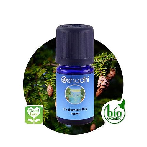Fir (Hemlock Fir) organic 有機加拿大鐵杉 5ml