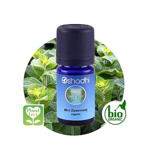 Mint (Spearmint) organic 有機綠薄荷精油 10ML