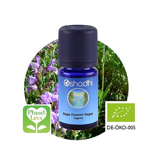 Sage (Spanish Sage) organic 有機西班牙鼠尾草 10ml
