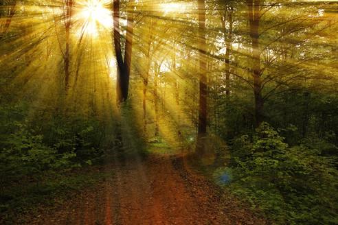 Christ Jésus, Christ Cosmique | La Lumière du Christ