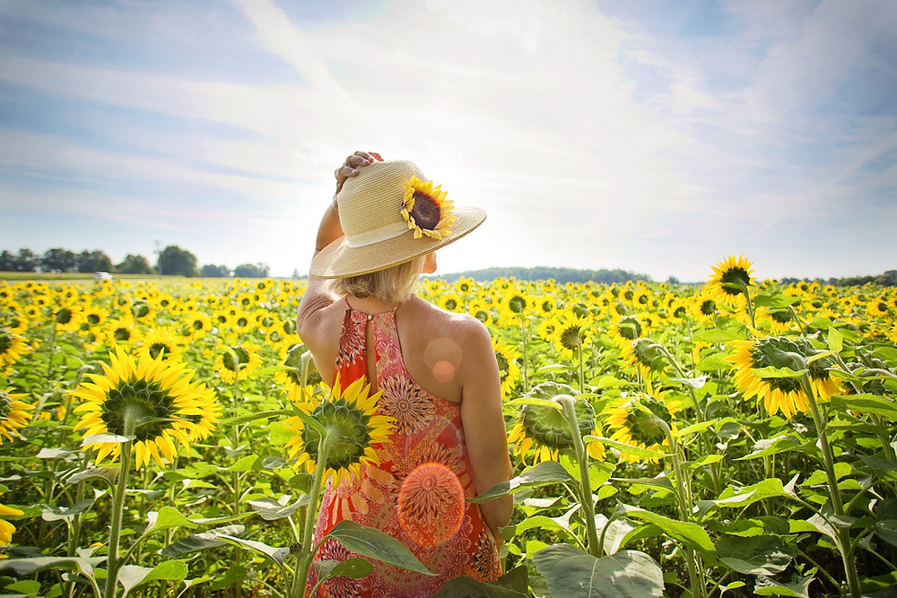 1 femme dans un champ de tournesols