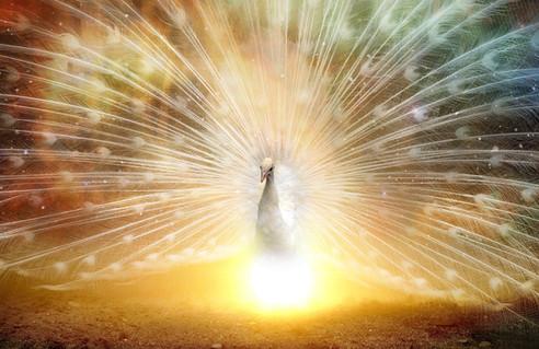 Orionis I La Puissance  des Bénédictions