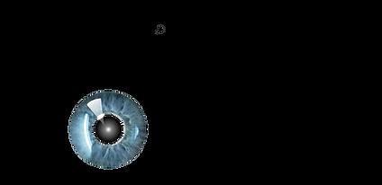 logo ACTUALIZADO 2021.png