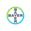 02_Bayer.png