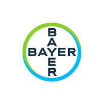 02_Bayer.png