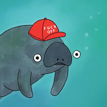 Manatee does not approve