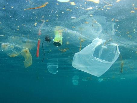 In Europa plastica a zero nel 2021. E gli studi odontoiatrici? Danno il buon esempio.